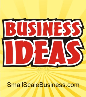 Coolbusinessideas Com Smallscalebusiness Com Targets