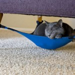 Under-Chair Hammock