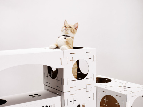 Cat Playhouse