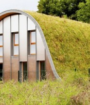The Green-Roofed Wave Home