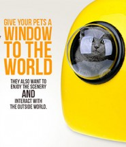 Pets' Window to the World