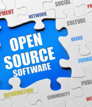 Opening Up to Open-Source Software in Government