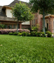 SYNLawn Clean Synthetic Turf