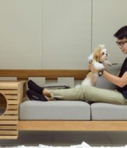 Modular Sofa for Humans and Pets