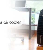The Perfect Solution to Year-Round Weather Problems – The 3-in-1 Quilo™