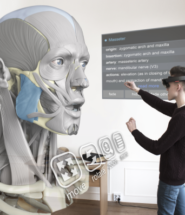 3D and VR Technology Revolutionize Human Anatomy Learning