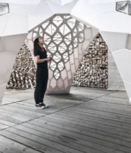 Revolutionary 3D Printing For Architecture
