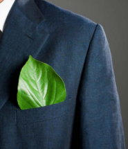 Why You Should Think About Building an Eco-Friendly Business