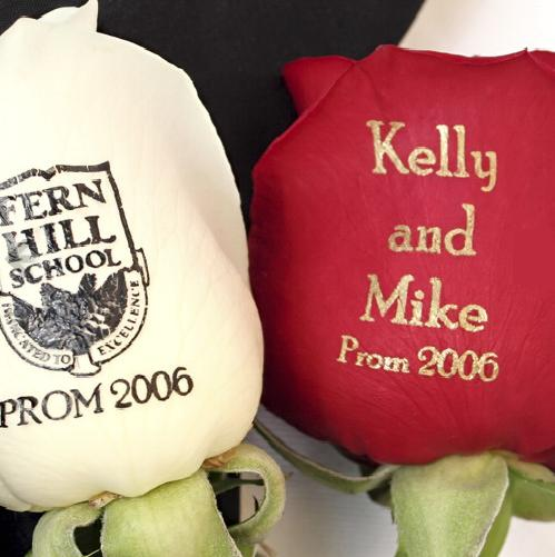 http://www.coolbusinessideas.com/images/speaking%20roses.jpg