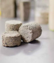 Bio- Bricks Cuts Construction Costs